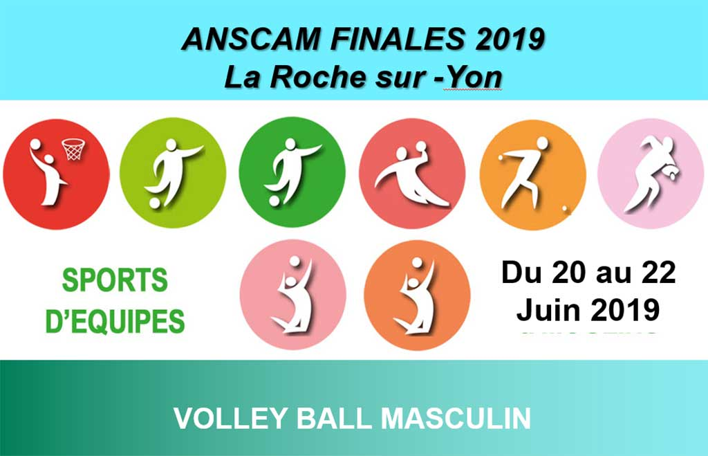 volley_ball_hommes_2019